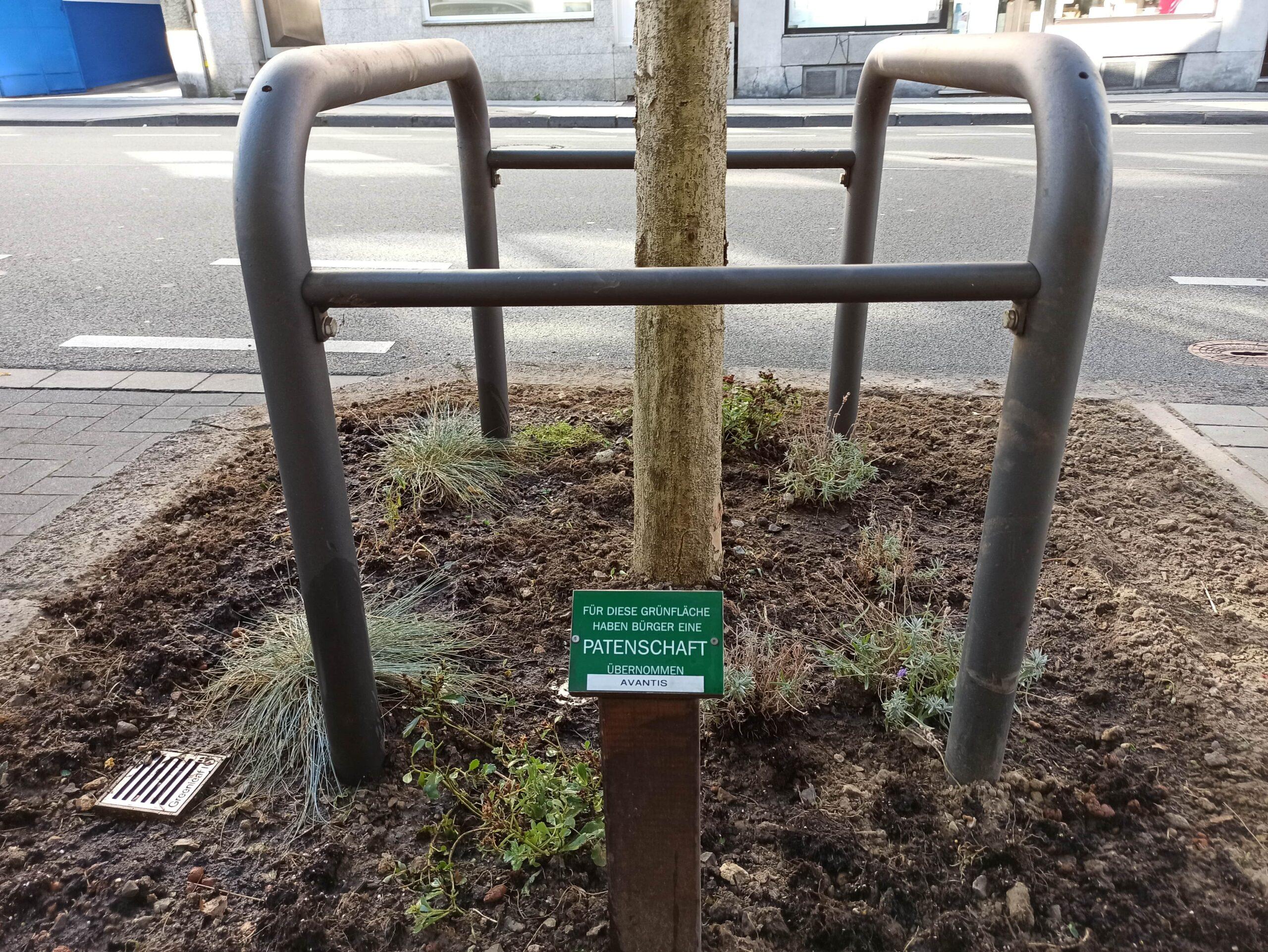 Pflegedienst Avantis Grünfläche Aachen